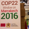 Marrakech Reflections:  the University of Minnesota at COP22 by Ellen Anderson