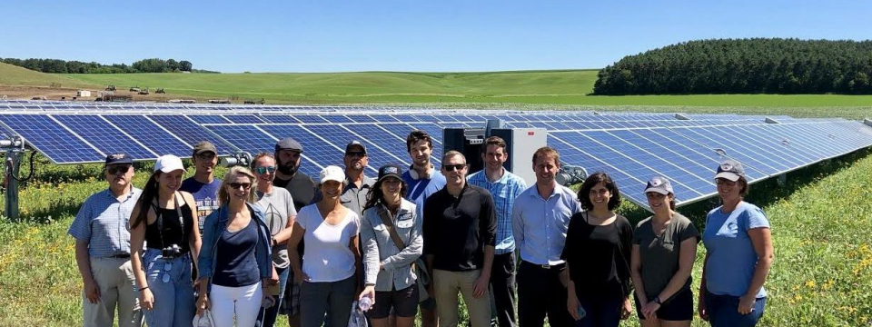 Keeping the buzz alive: ETL receives $50,000 gift for research on pollinator-friendly solar